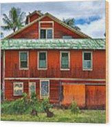 Hilo Town House Wood Print