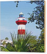 Hilton Head Lighthouse And Palmetto Wood Print