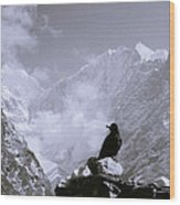 Himalayan Freedom Wood Print