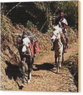 Himalayan Horseman - Nepal Wood Print
