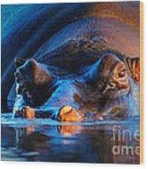 Hippopotamus  At Sunset Wood Print