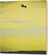 Hipster Flight Wood Print