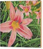 Hiroko Pink Daylily Wood Print