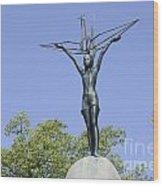 Hiroshima Peace Memorial Park Wood Print