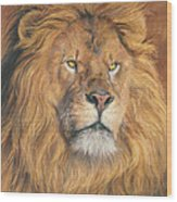 His Majesty - Detail Wood Print