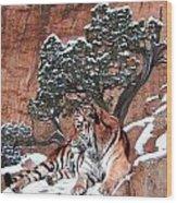 His Mountain Wood Print