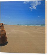 His Own Private Beach  Wood Print