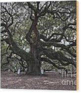 Historic Angel Oak Wood Print