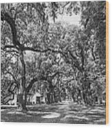 Historic Lane Bw Wood Print