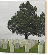 Historically Remembered - Little Big Horn Cemertry Wood Print