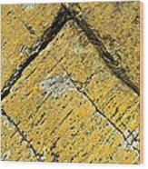 History Of Earth 3 Wood Print by Heiko Koehrer-Wagner