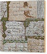 History Of Hill Ward Asylum Wood Print