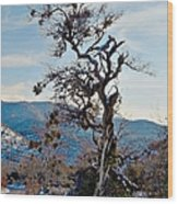Hitchhiker On Highway 173 Wood Print