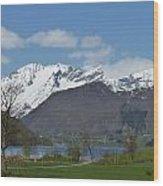 Hjorundfjord Wood Print