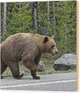 Hmmm .... What's On The Other Side Of The Road Today? Wood Print