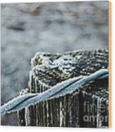 Hoar Frost At Sun Up Wood Print