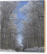 Hoar Frost On Campground Road Wood Print