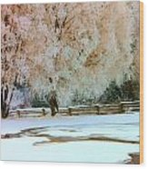 Hoar Frosted Trees Wood Print