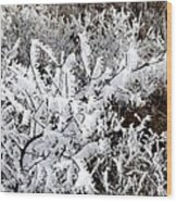 Hoarfrost 18  Wood Print