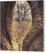 Hobbitt Vip Entrance Wood Print