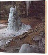 Hocking Hills Park Frozen Wood Print