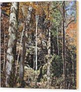 Hocking Hills Trees Wood Print