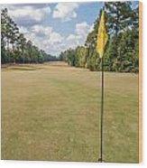 Hole Flag At A Golf Course Wood Print