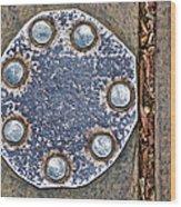 Hole Patch 2 John Muir Woods Wood Print