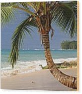 Holetown Beach Wood Print