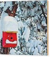 Holiday Birdhouse Wood Print
