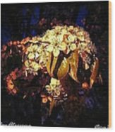 Holiday Blossoms Wood Print