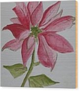 Holiday Flower Wood Print