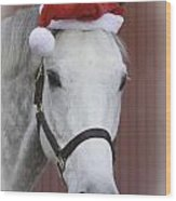 holiday horse Friendly Wood Print