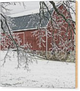 Holly Barn Wood Print