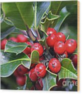 Holly Berries 2 Wood Print