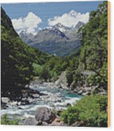 Hollyford River And The Eyre Range Wood Print