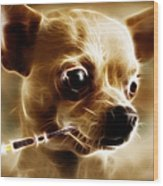 Hollywood Fifi Chika Chihuahua - Electric Art Wood Print