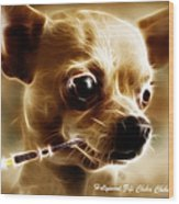 Hollywood Fifi Chika Chihuahua - Electric Art - With Text Wood Print