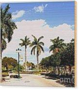 Hollywood Florida Wood Print