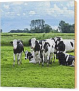 Holstein Heaven Wood Print