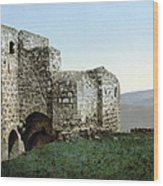 Holy Land: Ruins Wood Print