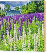 Holy Lupines Wood Print