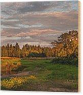 Holy Place. Karelia Wood Print