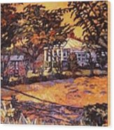 Home In Christiansburg Wood Print