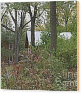 Home In The Woods Wood Print