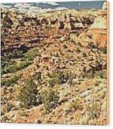 Home Of Calf Creek Falls Wood Print