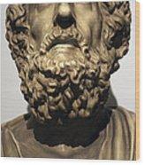 Homer  Wood Print