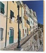 Homes In Bogliasco Wood Print