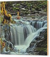 Homestead Falls Wood Print