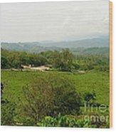 Honduran Homestead Wood Print